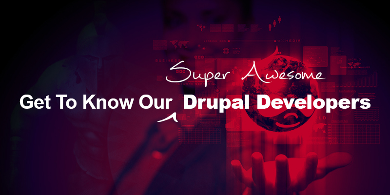 Awesome Drupal Developers