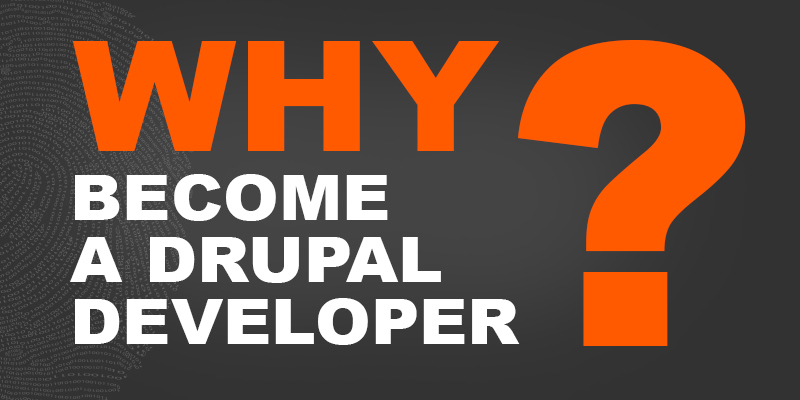 Why Become a Drupal Developer